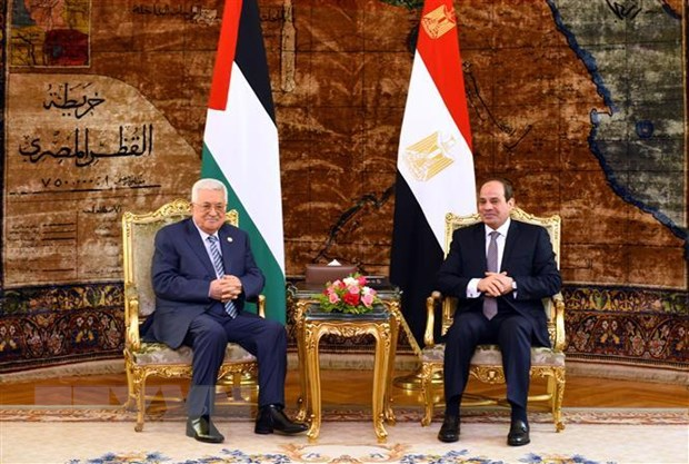 Ai Cap ung ho Palestine tim kiem mot giai phap chinh tri hinh anh 1