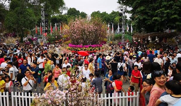 Le hoi hoa anh dao Ha Noi duoc xac lap ky luc Viet Nam hinh anh 1