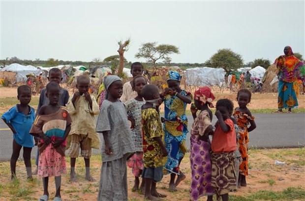 Nigeria: Tan cong tai vung Tay Bac khien nhieu dan thuong thiet mang hinh anh 1