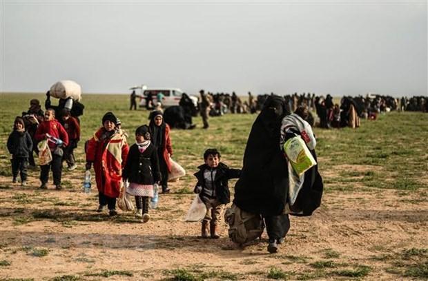 Syria: 400.000 nguoi phai lanh nan do xung dot tai khu vuc Tay Bac hinh anh 1
