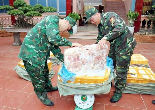 Lang Son: Bat giu 450kg nam lon nhap lau tu Trung Quoc vao Viet Nam hinh anh 1