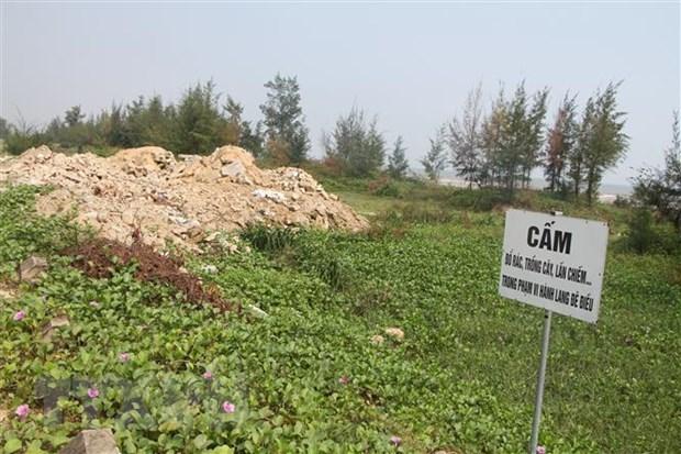 Ha Tinh: Rac thai bua vay tuyen ke bien dai 8km qua xa Thinh Loc hinh anh 1