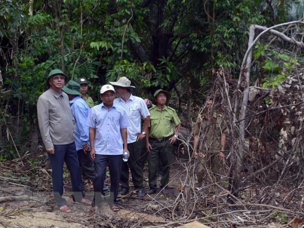 Pho Bi thu Thuong truc Tinh uy Phu Yen kiem tra khu vuc rung Hon Dac hinh anh 1