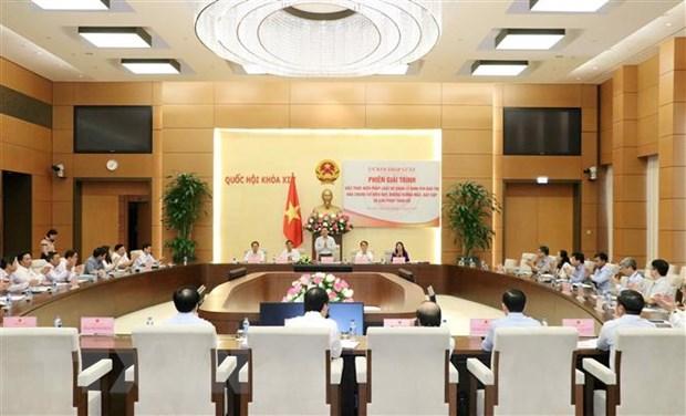 Ban thao ve thi diem khong to chuc Hoi dong nhan dan phuong tai Ha Noi hinh anh 1