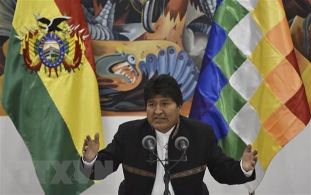 Tong thong Bolivia bac bo 'toi hau thu' cua phe doi lap hinh anh 1