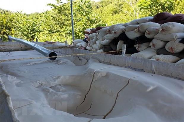 Tinh quặng đất hiếm sau khi được bóc tách khỏi bể dung dịch. (Ảnh: Quốc Khánh/TTXVN)