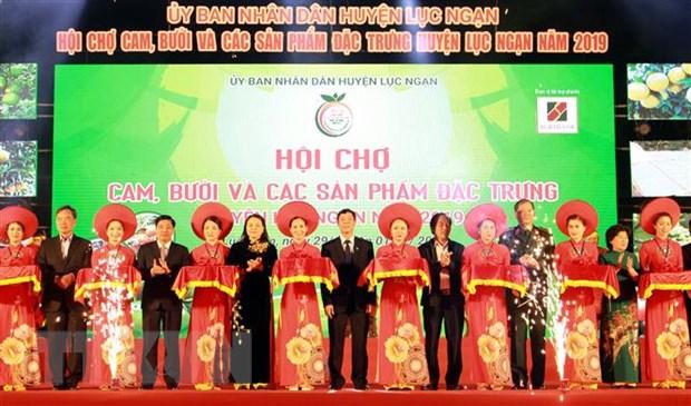 Khai mac Hoi cho cam, buoi va cac san pham dac trung Luc Ngan hinh anh 1