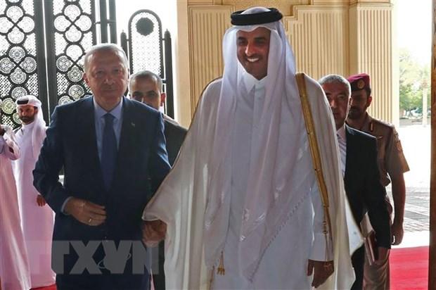 Saudi Arabia moi Quoc vuong Qatar du Hoi nghi thuong dinh vung Vinh hinh anh 1