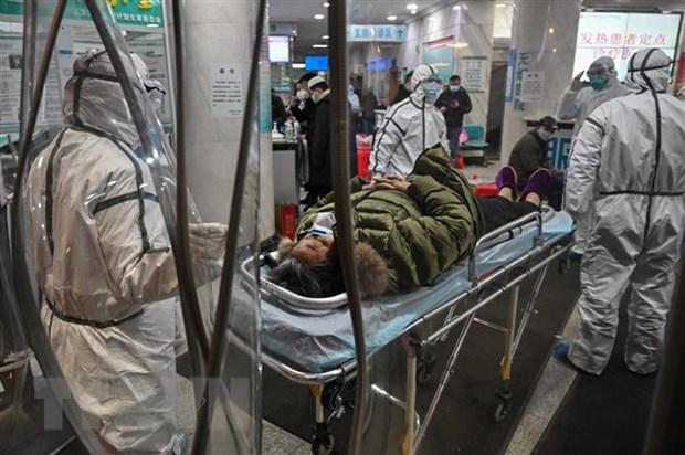 Virus corona: Han Quoc ap dung phuong phap chan doan nhanh moi hinh anh 1