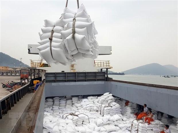 Bốc xếp gạo xuất khẩu tại cảng Cửa Lò (Nghệ An). Ảnh: Danh Lam/TTXVN