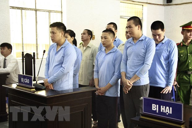 Dak Lak: Y an so tham doi voi 8 bi cao au da lam 8 nguoi thuong vong hinh anh 1