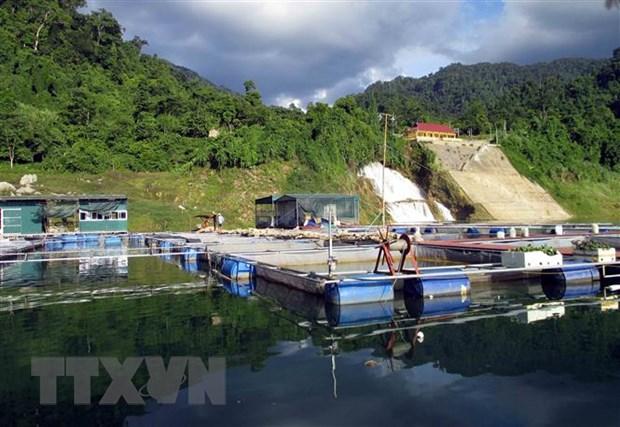Mô hình nuôi cá lồng trên hồ thủy điện Na Hang. (Ảnh: Vũ Quang/TTXVN)