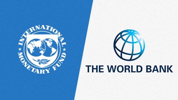 Hoi nghi mua Thu IMF-WB se duoc to chuc theo hinh thuc truc tuyen hinh anh 1