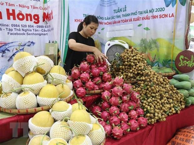 Hiep dinh EVFTA: Tan dung loi the tranh ap luc cho hang Viet hinh anh 1