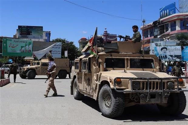 Dung do giua luc luong chinh phu Afghanistan va Taliban hinh anh 1