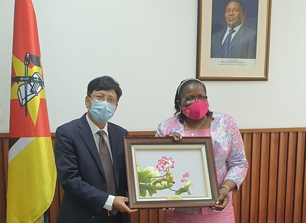 Mozambique ca ngoi Viet Nam voi vai tro Uy vien khong thuong truc HDBA hinh anh 1