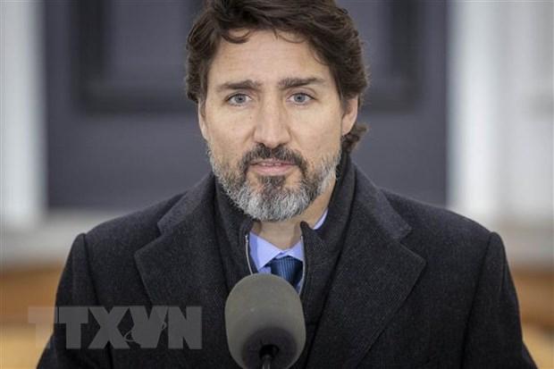 Bau cu Canada: Danh gia kha nang xu ly khung hoang cua chinh phu hinh anh 1