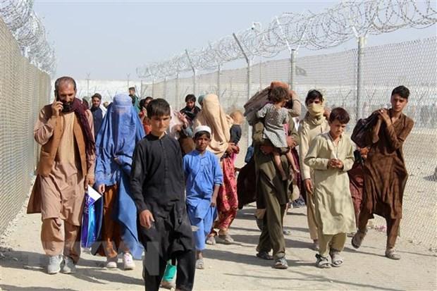 My dua 20.000 nguoi Afghanistan so tan toi cac can cu quan su hinh anh 1