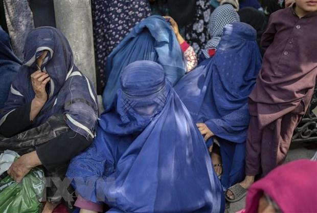 Taliban cong bo noi cac thanh vien chinh phu, khong co nu bo truong hinh anh 1