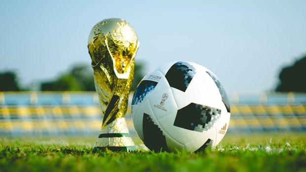 EU phan doi ke hoach to chuc World Cup hai nam mot lan hinh anh 1