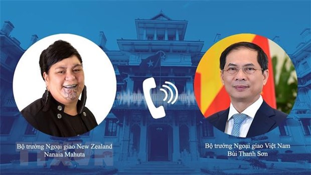 Viet Nam-New Zealand phoi hop chat che trong co che hop tac da phuong hinh anh 1