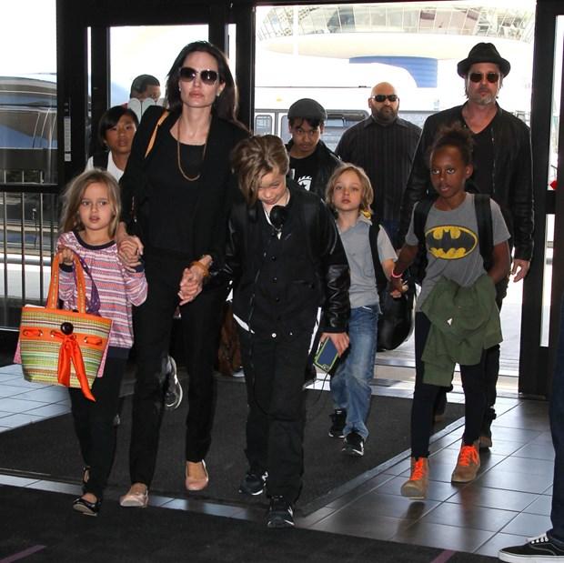 Angelina Jolie dam don ly di vi Brad Pitt bao hanh con cai? hinh anh 2