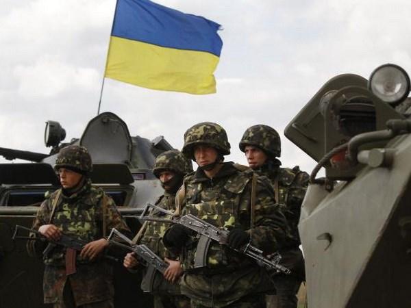 Ukraine: Lenh ngung ban moi lai bi vi pham, 2 binh sy thiet mang hinh anh 1