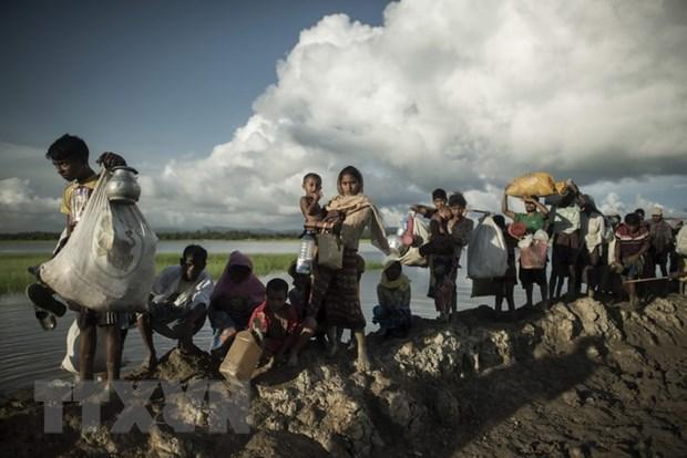 Bangladesh cho phep nhap canh doi voi 10.000 nguoi Rohingya hinh anh 1