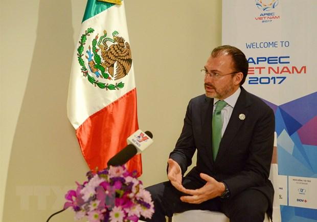 Ngoai truong Mexico an tuong voi nhieu y tuong cua Viet Nam tai APEC hinh anh 1