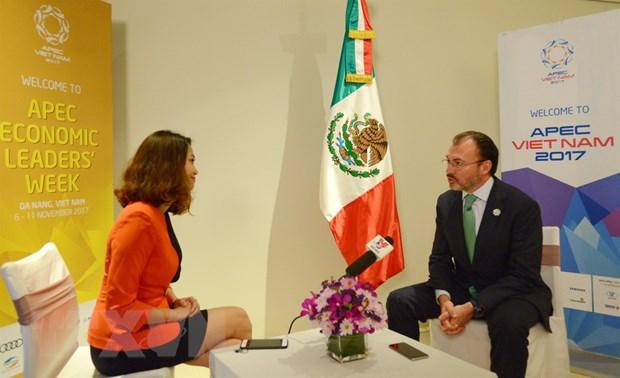 Ngoai truong Mexico an tuong voi nhieu y tuong cua Viet Nam tai APEC hinh anh 2