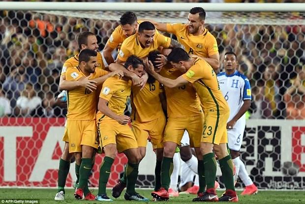 Danh sach chi tiet 32 doi tham du vong chung ket World Cup 2018 hinh anh 2