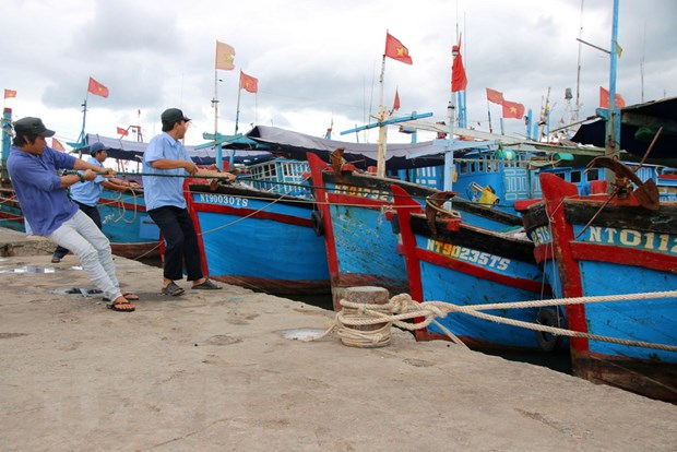 Ninh Thuan phat trien cac nganh kinh te bien toan dien va hieu qua hinh anh 1
