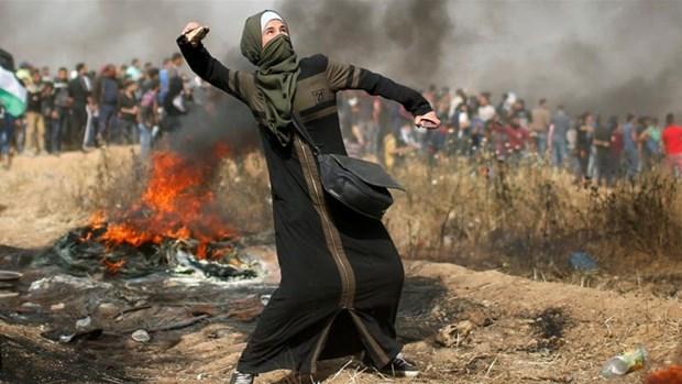 Bao luc tiep dien tai Dai Gaza, hang chuc nguoi thuong vong hinh anh 1