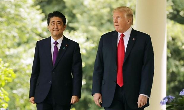 Ong Shinzo Abe khen ngoi ong Trump ve ket qua cuoc gap My-Trieu hinh anh 1