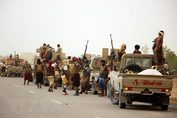 Yemen: UAE yeu cau Houthi rut khoi thanh pho cang Hodeida hinh anh 1
