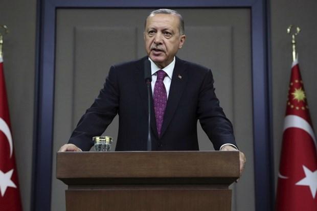 Tong thong Tho Nhi Ky Erdogan bay to mong muon gia nhap BRICS hinh anh 1
