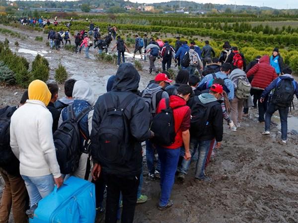 Hungary trieu Dai su Thuy Dien do nhung chi trich ve chinh sach di cu hinh anh 1