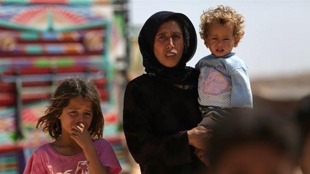 """Tho Nhi Ky keu goi Nga va Iran ngan chan """"tham hoa"""" o Idlib hinh anh 1"""