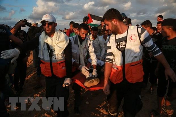 Mot nguoi Palestine thiet mang tai Dai Gaza do trung dan cua Israel hinh anh 1