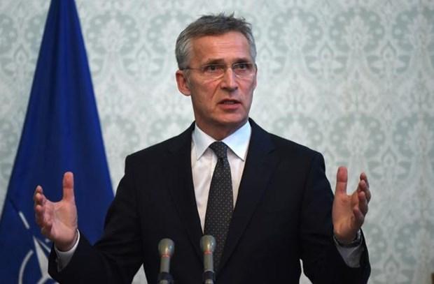 NATO trieu tap hop khan voi Ukraine ve vu dung do tai Eo bien Kerch hinh anh 1