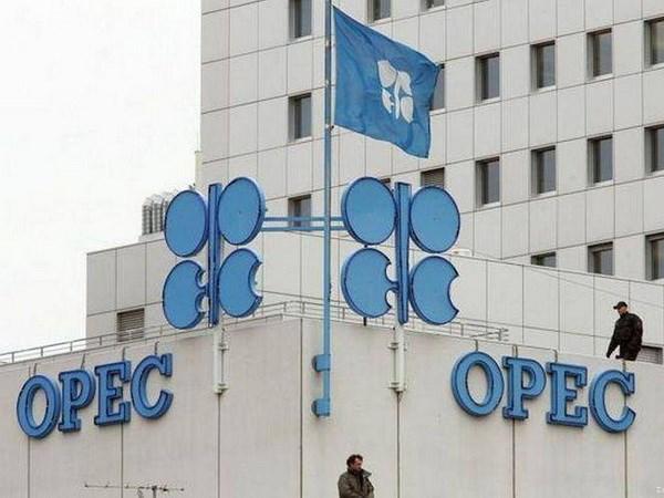 OPEC bu dap luong dau thieu hut sau khi My tai cam van Iran hinh anh 1