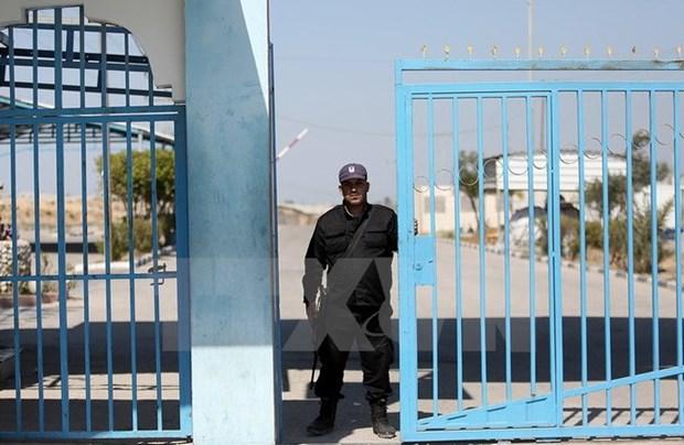 Phai doan an ninh cap cao Ai Cap toi Gaza thao luan voi Hamas hinh anh 1