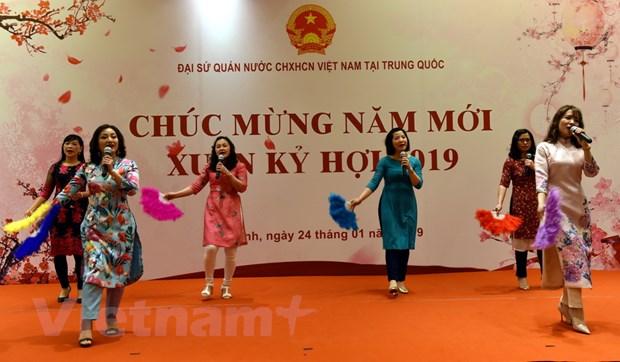Dai su quan Viet Nam tai Trung Quoc to chuc Tet Cong dong 2019 hinh anh 3