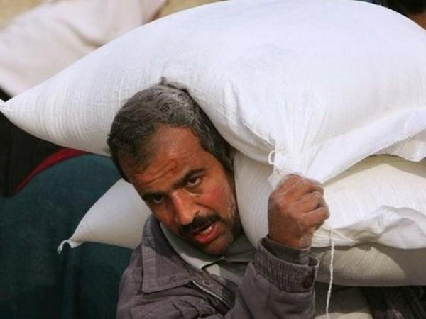My bac bo tin de nghi cac ngan hang ngung giao dich voi Palestine hinh anh 1