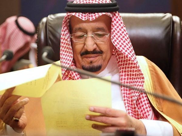 Saudi Arabia khang dinh ung ho nha nuoc Palestine doc lap hinh anh 1