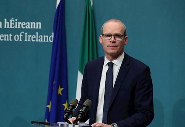 Chinh phu Ireland len ke hoach ung pho khan cap voi 'Brexit cung' hinh anh 1