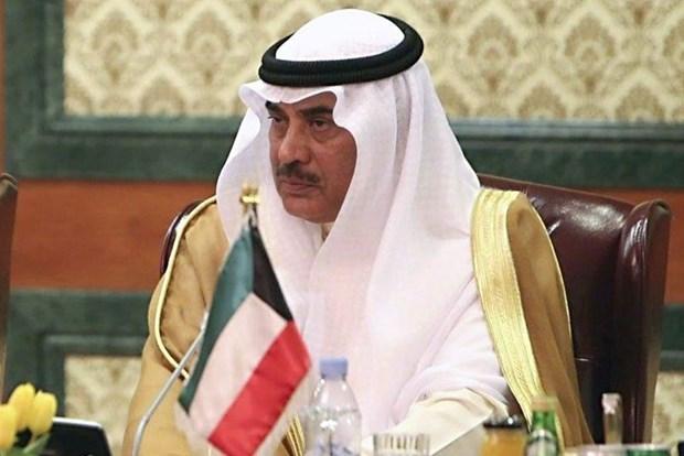 Kuwait keu goi Syria tro ve voi 'gia dinh' cac quoc gia Arab hinh anh 1
