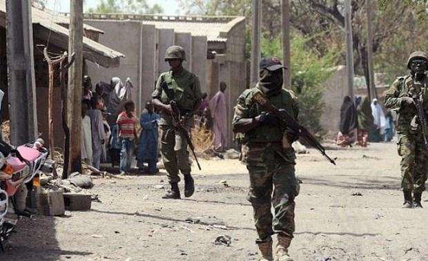 Quan doi Niger tieu diet hang chuc phien quan Boko Haram hinh anh 1