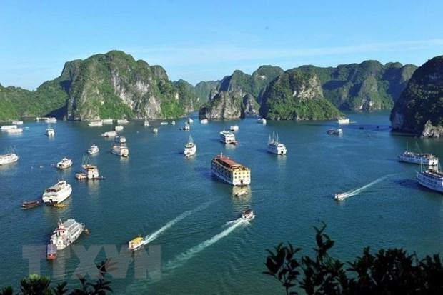 Quang Ninh: Dung hoat dong 41 xuong cao toc chua du dieu kien hinh anh 1