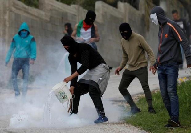 PLO keu goi Hamas cham dut dan ap cac cuoc bieu tinh tai Gaza hinh anh 1